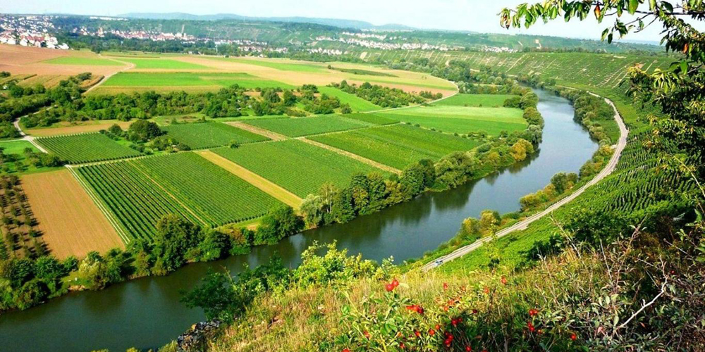 انتخاب سیستم آبیاری مناسب مزرعه