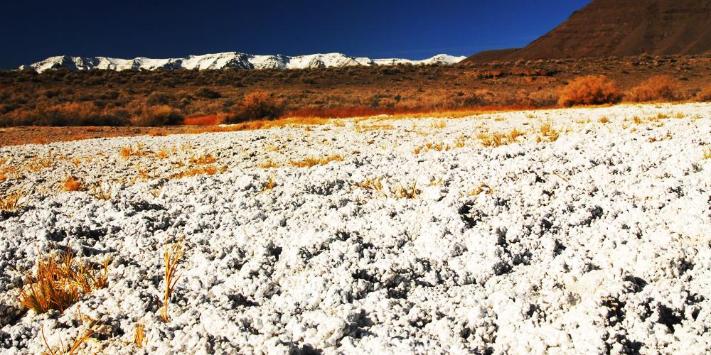 چگونه بوسیله آبیاری نمک خاک را کنترل کنیم