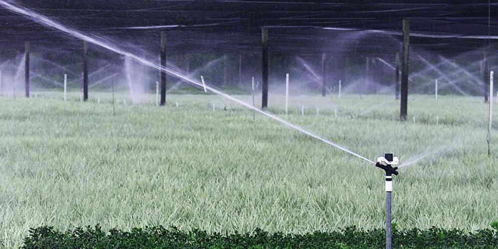نکته در انتخاب آبپاش مناسب آبیاری با آبپاش