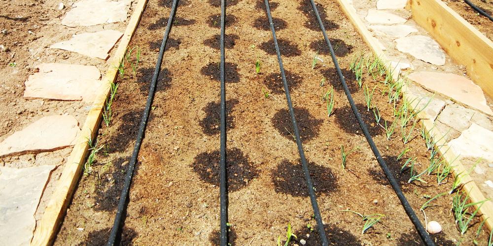 انتخاب قطره چکان برای گیاهان