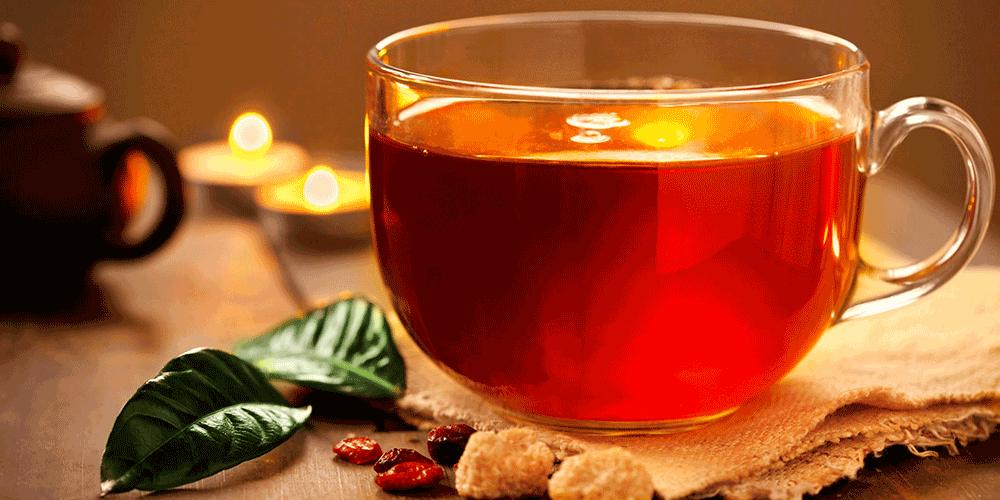 ۵ نکته که باید در کاشت چای بدانید