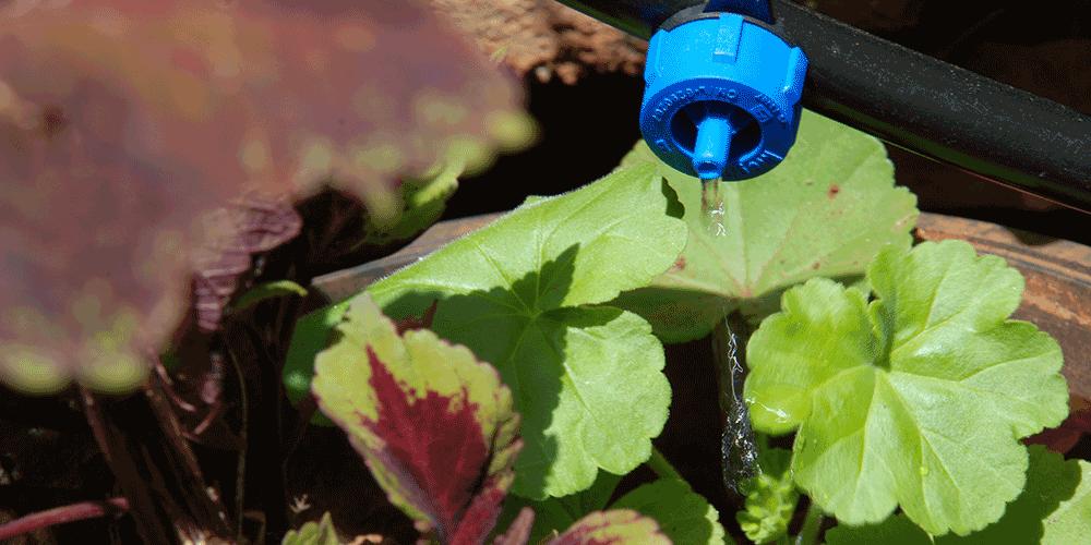 راهکارهای افزایش کارایی اسید شویی قطره چکان ها
