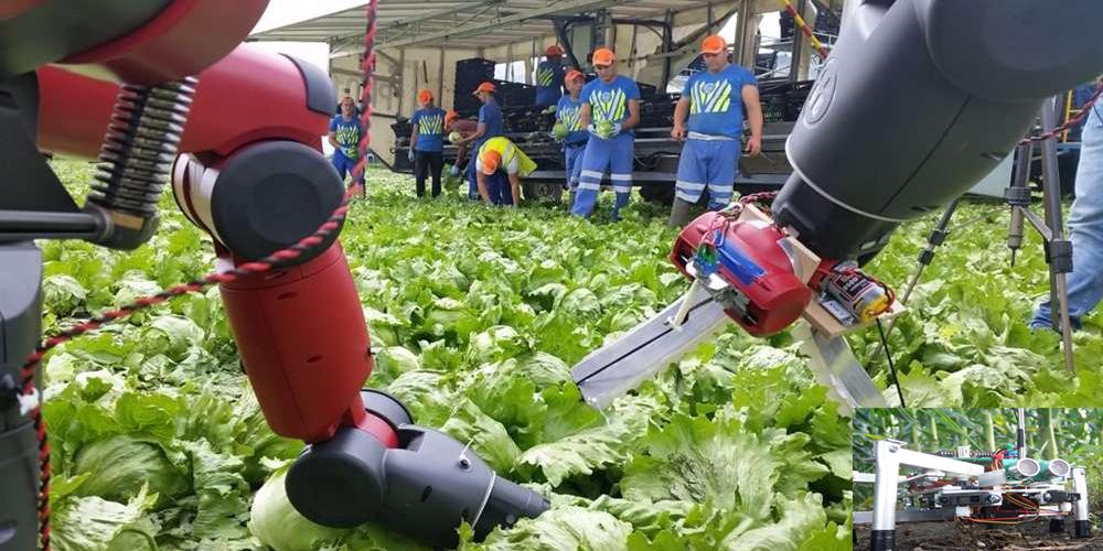 فناوری های جدید کشاورزی– اتوماسیون سازی
