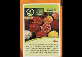 بذر گل میخک – پاکان بذر اصفهان
