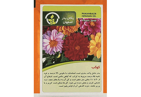بذر گل کوکب - پاکان بذر