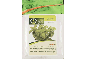 بذر ریحان بذر ریحان سبز بذر ریحان بنفش بذر خانگی ریحان بذر سبزیجات پاکان بذر اصفهان