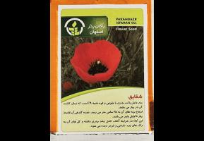 بذر شقایق بذر گل شقایق بذر گل بذر گل های وحشی