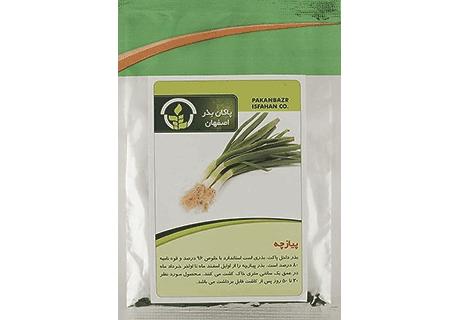 بذر پیازچه قیمت بذر پیازچه بذر پیازچه خوب کیفیت بذرییازچه