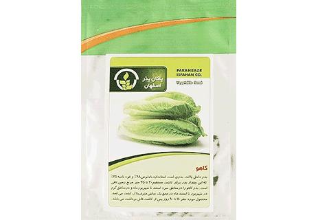 بذر کاهو قیمت بذر کاهو بذر کاهو برگی بذر کاهو پیچ انواع بذر کاهو