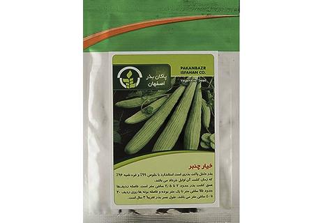 بذر خیار چنبر بذر خیار ارمنی قیمت بذر خیار چنبر بذر ارزان خیار چنبر بذر مناسب خیار چنبر بذر درجه یک حیار چنبر