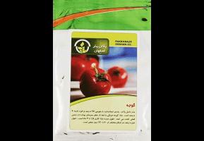 بذر گوجه فرنگی بذر گوجه قیمت بذر گوجه بهترین قیمت بذر قیمت ناسب بذر بذر ارزان بذر درجه یک