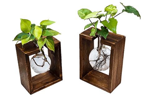 باکس چوبی رومیزی آیریس