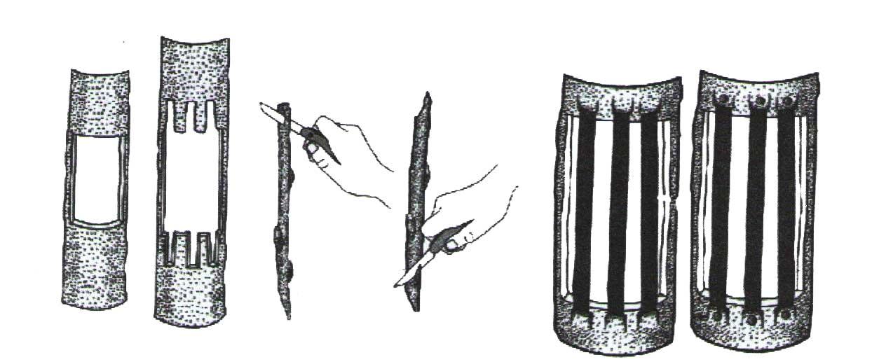 چوپیوند پلی