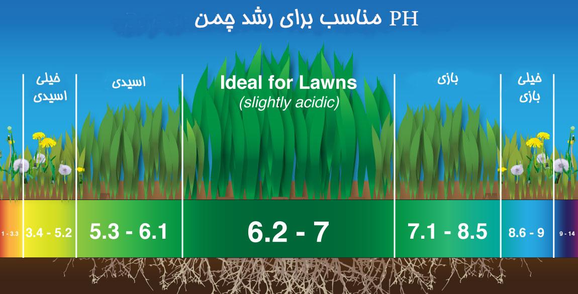 ph مناسب برای رشد چمن