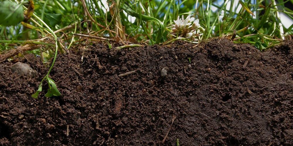 ویژگی های مهم خاک های کشاورزی