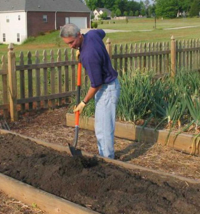 آماده سازی خاک برای گوجه فرنگی